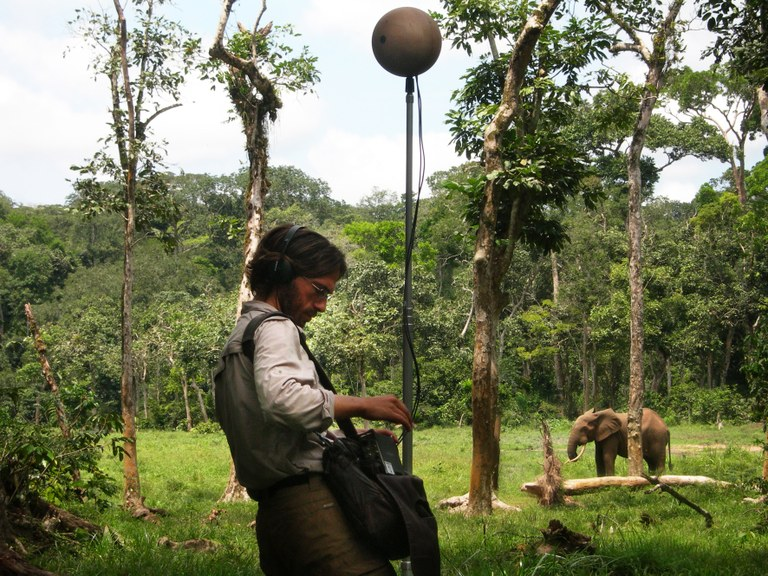 DMonacchi Africa 08 300dpi.jpg